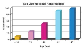 EggAbnormalities