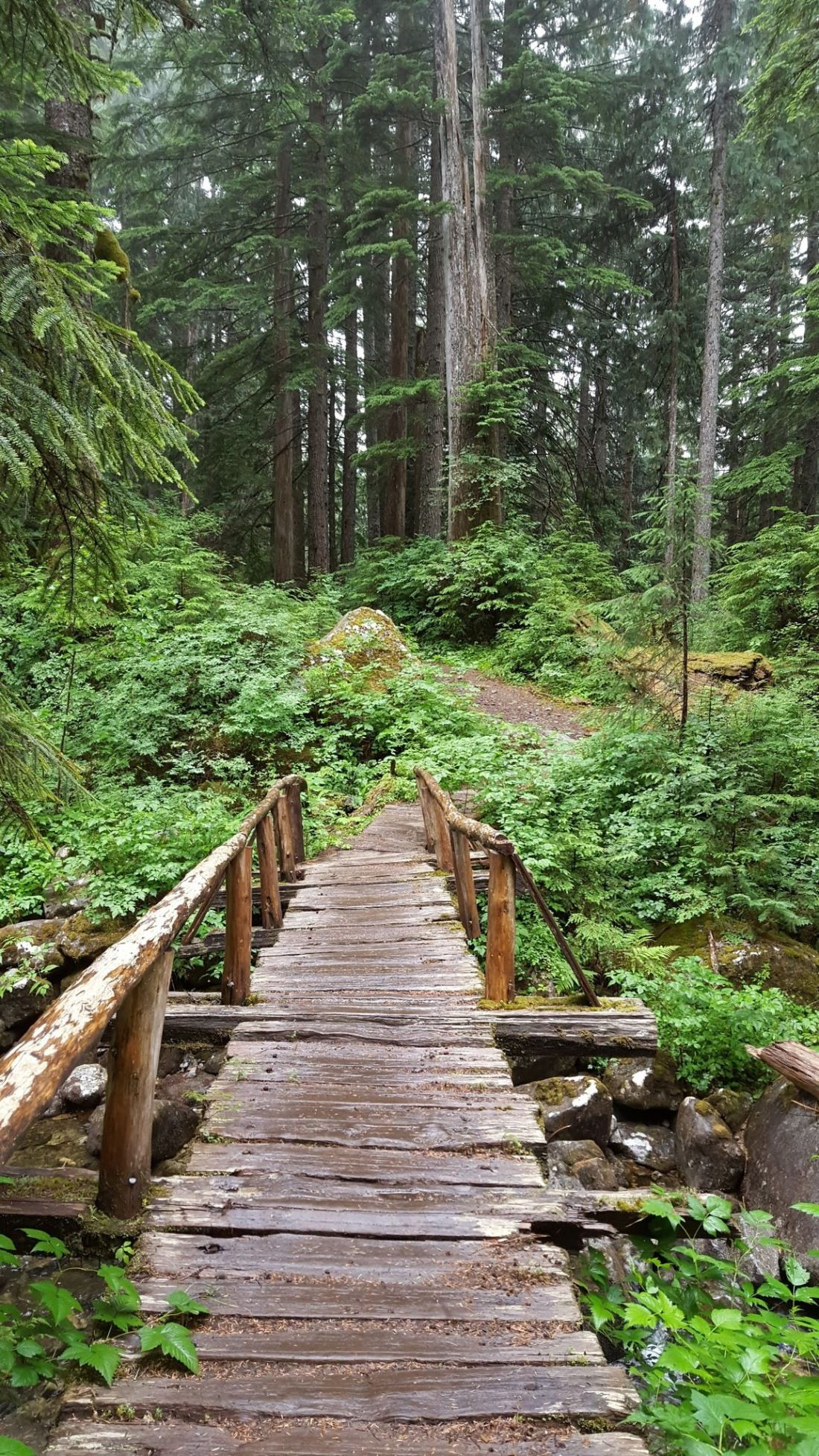 bare-mountain-trail