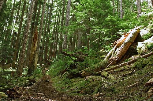 boulder-lakes-trail