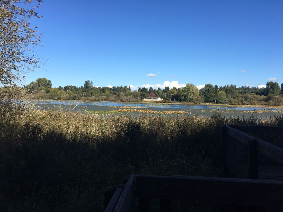 chehalis-western-trail