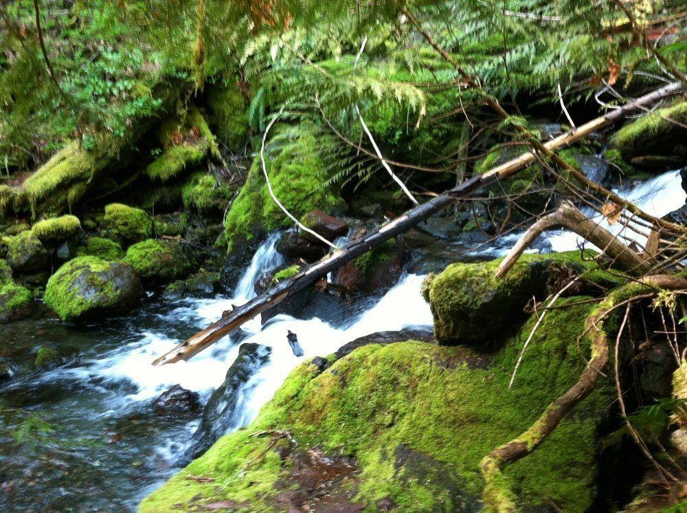 copper-creek-trail