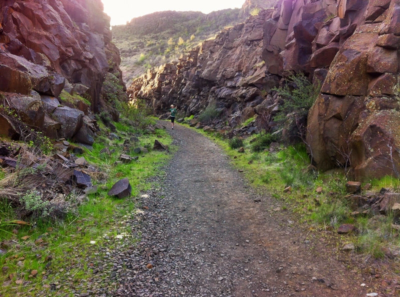 cowiche-canyon-conservancy-trails