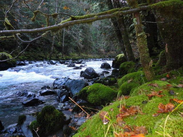 duckabush-river-to-lacrosse-pass-trail