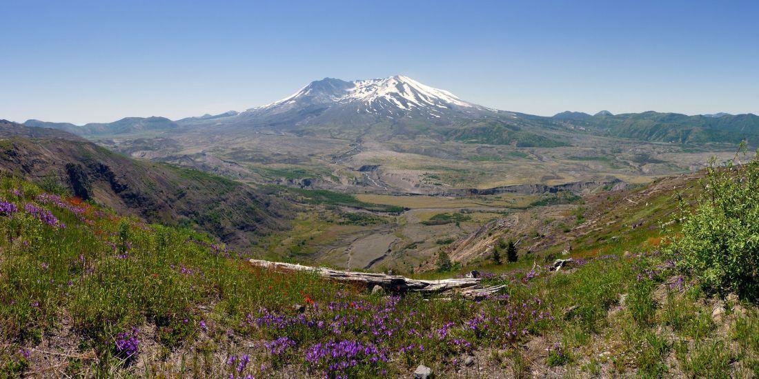 harrys-ridge-trail