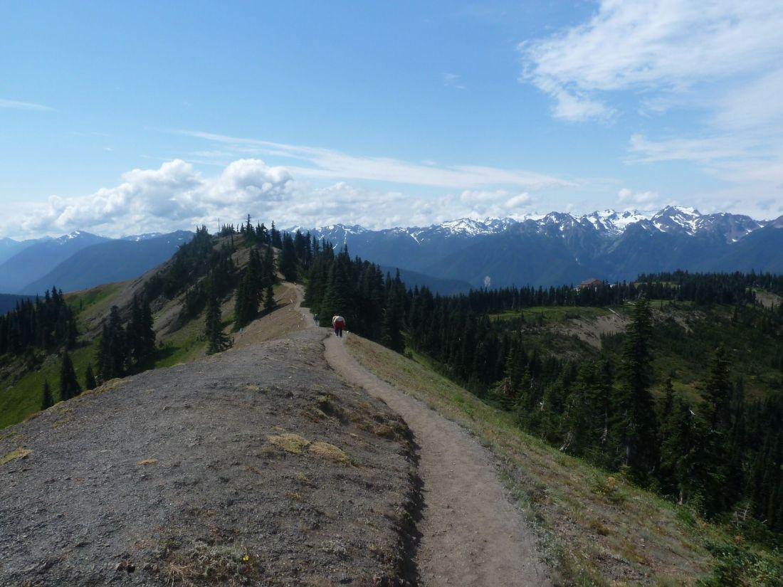 hurricane-hill-trail