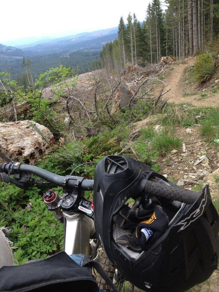 larch-mountain-trail