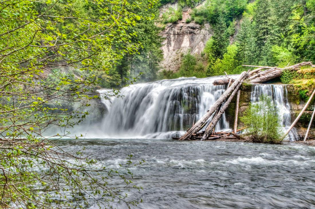 lewis-river-falls-trail