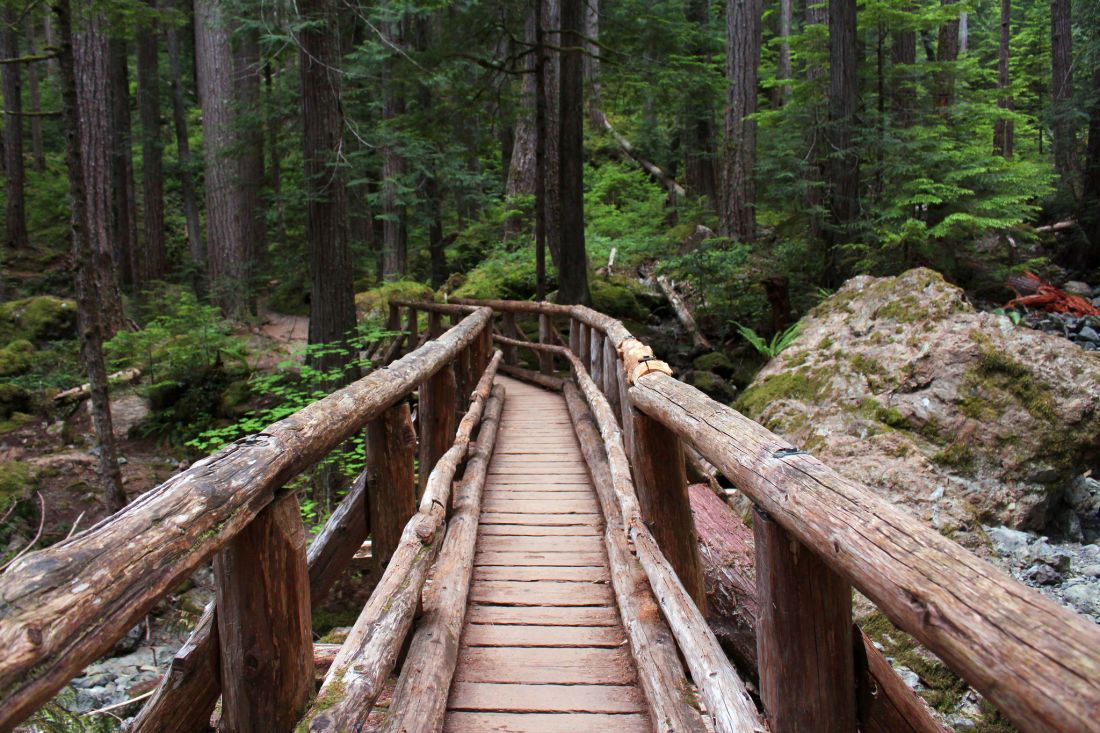 lower-lake-lena-trail