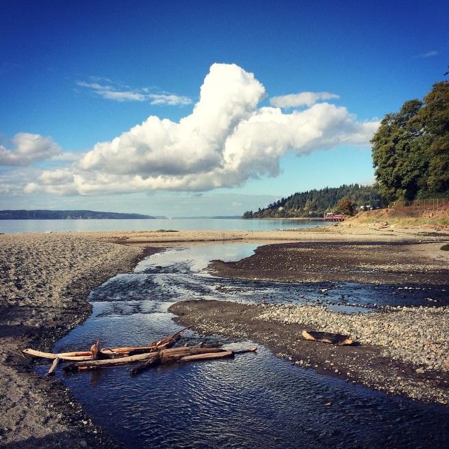 meadowdale-beach-trails