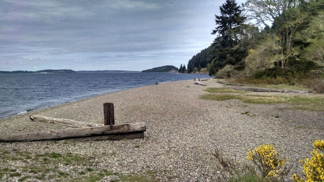 sequalitchew-creek-trail2