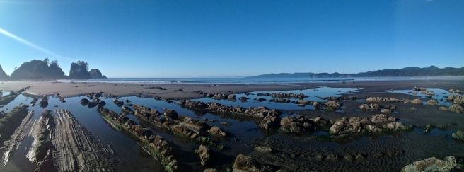 shi-shi-beach-trail
