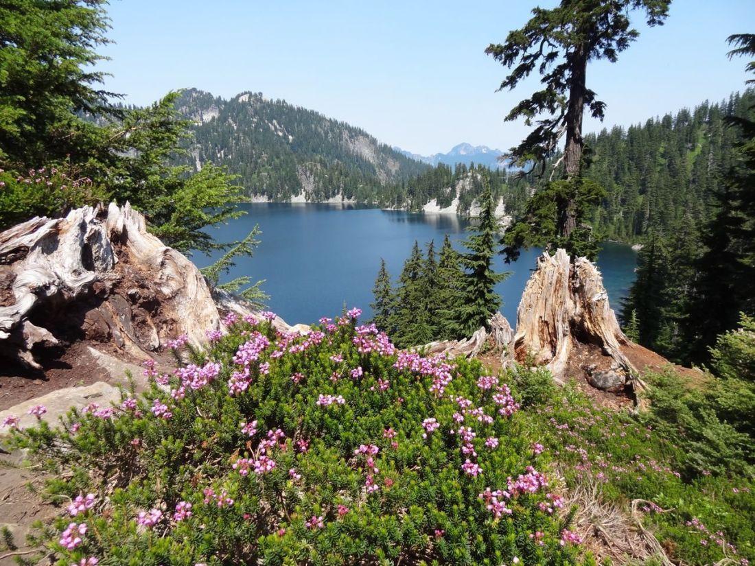 snow-lake-trail