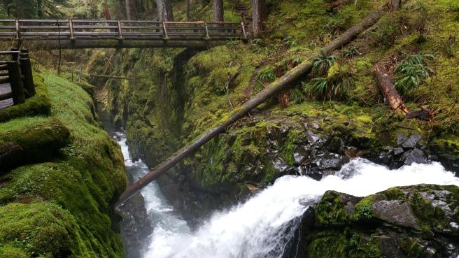 sol-duc-falls-trail