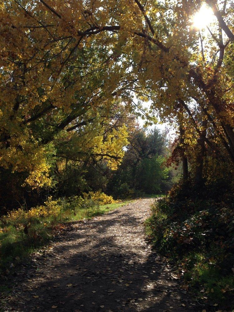 spirit-of-america-trail